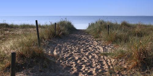 Bild mit Natur,Landschaften,Gewässer,Strand,Sandstrand,Ostsee,Meer,Landschaft,Düne,Dünen,Dünengras,Dünenlandschaft,ozean,Strandhafer
