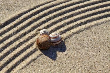 Sand und Schneckenhaus 03