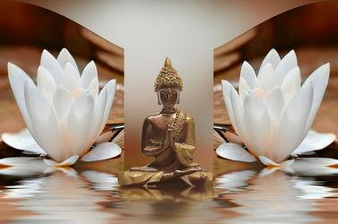 Bild mit Steine,Blume,Meditation,Entspannung,seerosen,Buddha,Wellness,Spa,seerose,Deko,Religion,glaube,shui