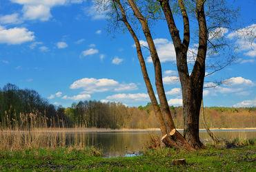 Bild mit Natur,Landschaften,Bäume,Seen,Baum,Landschaft,See