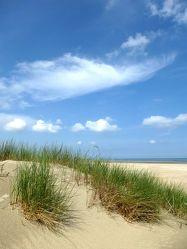 Bild mit Strände, Wellen, Sand, Strand, Sandstrand, Düne, Dünen, Dünengras, Dünenlandschaft, Küste, Wellness, maritimes, Strandhafer, Traum