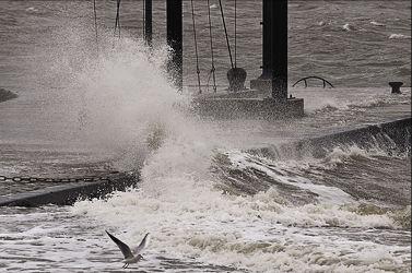 Bild mit Schiffe, Boote, schwarz weiß, Sturmflut, SW