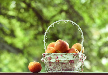 Bild mit Frühling, Sommer, Küchenbild, Apfel, Stillleben, Küchenbilder, garten, KITCHEN, Küche, Küchen, Korb, Gartenzeit