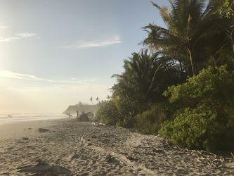 Bild mit Natur, Wasser, Gewässer, Strände, Sonne, Landschaft, Paradies, Sonnenuntergang/Sonnenaufgang, Costa Rica, Strand und Meer, Playa Hermosa/Santa Teresa