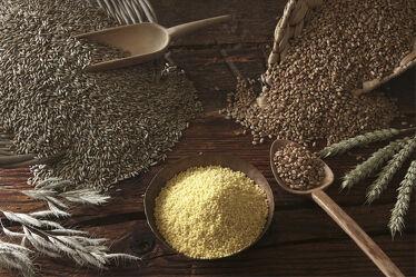 Bild mit Getreide, rustikal, Küchenbild, Food, Küchenbilder, Körner, Weizen, Roggen, Cerealien, hirse