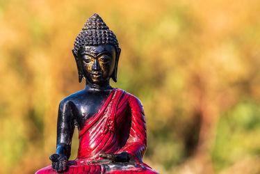Bild mit Kunst, Hintergrund, Bunt, Buddha, FARBE, Buddhismus, Glauben, Foto, Statue, figur, Tiefenschärfe, vertieft, Kontemplation, Aufnahme