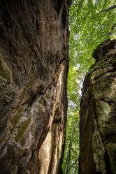 Bild mit Natur, Bäume, Wälder, Wald, Baum, sandstein, Jura, Teufelsschlucht, Naturpark Südeifel, Irrel, Eiszeit, Felssturz, Gesteinsschichten, Verwitterung, Frostsprengung, Felsstürze, Felsblöcke, Felsspalte, Ferschweiler
