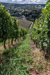 Bild mit Wolken, Deutschland, Trinken, Landschaft, Licht, Perspektive, Ernährung, landwirtschaft, Schatten, Wachstum, Trier, Weinberg, Weinbau, Reben