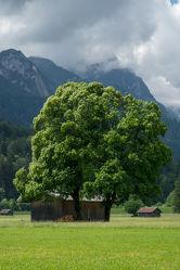 Bild mit Berge, Himmel, Wolken, Felsen, Urlaub, Blau, Sommer, Sonne, Alpen, Bayern, Grainau, Zugspitze, Werdenfelser Land, Zugspitz, Arena, Großer Waxenstein, Alpspitz, Zwölferkopf, Garmisch, Partenkirchen