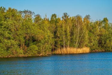Bild mit Natur, Wasser, Bäume, Jahreszeiten, Frühling, Sonnenaufgang, Wald, Licht, See, Ruhe, Entspannung, Spiegelungen, Relaxen, Schatten, Morgenlicht, Reflexionen, Biotop, Anglersee