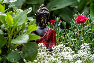 Bild mit Grün, Pflanzen, Jahreszeiten, Sommer, Ruhe, Entspannung, garten, Beet, figur, Kontemplation