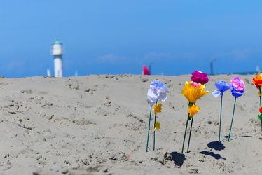 Bild mit Blumen, Meere, Sand, Urlaub, Strand, Nordseeküste, Leuchtturm