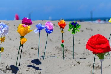Bild mit Blumen, Sand, Urlaub, Strand, Meer, Nordseeküste, basteln, Belgien