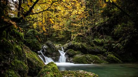 Bild mit Bach, Wasserfall, Bach im Wald, Landschaften im Herbst, Herbststimmung, Herbstidylle