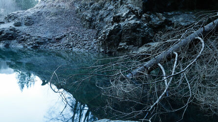 Bild mit Baumstämme, See, winterlandschaft