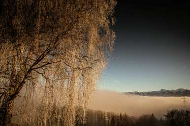 Bild mit Laubbäume, Nebel, Panorama, Sonnen Himmel, Nebelmeer