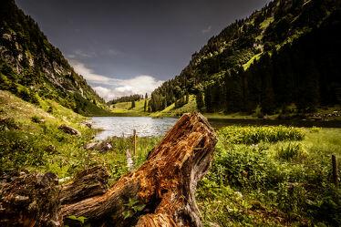 Bild mit Täler, Nadelbäume, Bergsee, Wanderungen