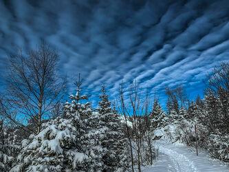 Bild mit Himmel, Wolken, Sonne, Wolkenhimmel, Wolkenhimmel Panorama, Winterlandschaften, Winterwald