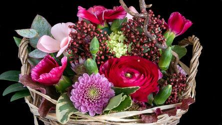 Bild mit Pflanzen, Blumen, Korbstruktur, farbenfroh, Dekoration, schwarzer Hintergrund, grüne Blätter
