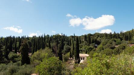 Bild mit Natur, Landschaft, Blauer Himmel, Griechenland, Spätsommer, Pinien, bauernhof, Insel Zakynthos