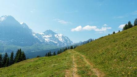 Bild mit Berge, Bäume, Weiden und Wiesen, Wolken, Sommer, Wolkenhimmel, Berggipfel, schweizeralpen