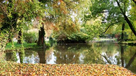 Bild mit Natur, Herbst, Herbstblätter, farbenfroh, Herbststimmung, Weiher, Wasseroberfläche