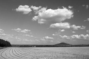Bild mit Natur, Landschaften, Görlitz, Feld, Landeskrone, Felder, berg, schwarz weiß, Goerlitz