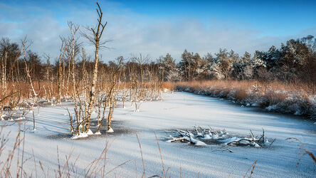 Bild mit Natur, Winter, Schnee, Panorama, Sonnenschein, Sonnenlicht, Moor, Hammeniederung, Teufelsmoor, Winterstimmung