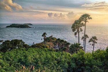 Bild mit Palmen, Inseln, Meerblick, Sonnenuntergänge, asien, südostasien, Aussichtspunkt, Thailand, Phuket