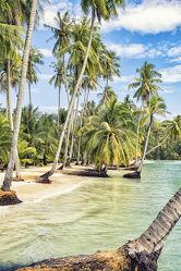 Bild mit Natur, Strände, Palmen, Inseln, Meerblick, Insel, asien, südostasien, Thailand