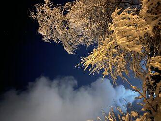 Bild mit Winter, Schnee, Baum