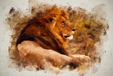 Bild mit Tier, Löwe, Afrika, safari, digital, Painting