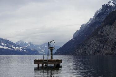 Bild mit Natur, Wasser, Berge, Winter, Vögel, Möwen, Seeblick, See, Seelandschaft, Ruhe am See