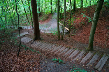 Bild mit Natur, Bäume, Treppen, Wald, Waldweg, Blätter, Waldblick, Wanderweg, Wandern, Ruheort