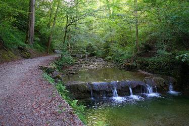 Bild mit Natur, Wasser, Bäume, Wald, Waldweg, Waldblick, Waldbach, Wasserfall, Wanderweg, pfad