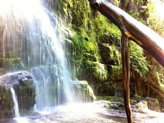 Bild mit Natur, Wald, Bach, Waldbach, Wasserfall, Moos