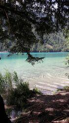 Bild mit Natur, Seen, Waldsee, glasklar