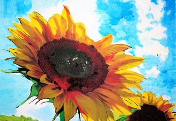 Bild mit Farben, Gelb, Kunst, Natur, Pflanzen, Himmel, Blumen, Korbblütler, Sonnenblumen, Malerei, Blume, Flower, Flowers, Sonnenblume, Sunflower, Sunflowers, Helianthus annuus, Helianthus, Asteraceae, gemalte Sonnenblume