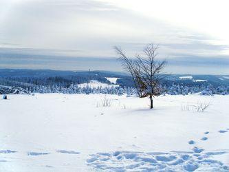 Bild mit Natur, Pflanzen, Landschaften, Berge und Hügel, Berge, Himmel, Hügel, Bäume, Jahreszeiten, Winter, Wetter, Schnee, Wolken, Orte, Siedlungen, Ländliche Gebiete, winterlandschaft